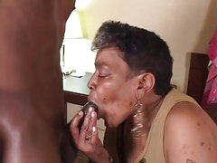 Ebony Grannie suck and fuck Young BBc